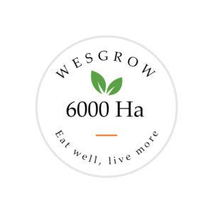 Home - 6000 Ha Badge Square 300x300
